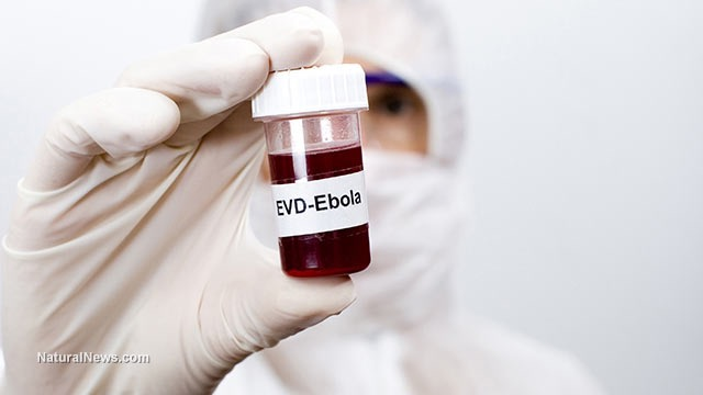 Ebola cases being hidden from public as government stockpiles survivors' blood